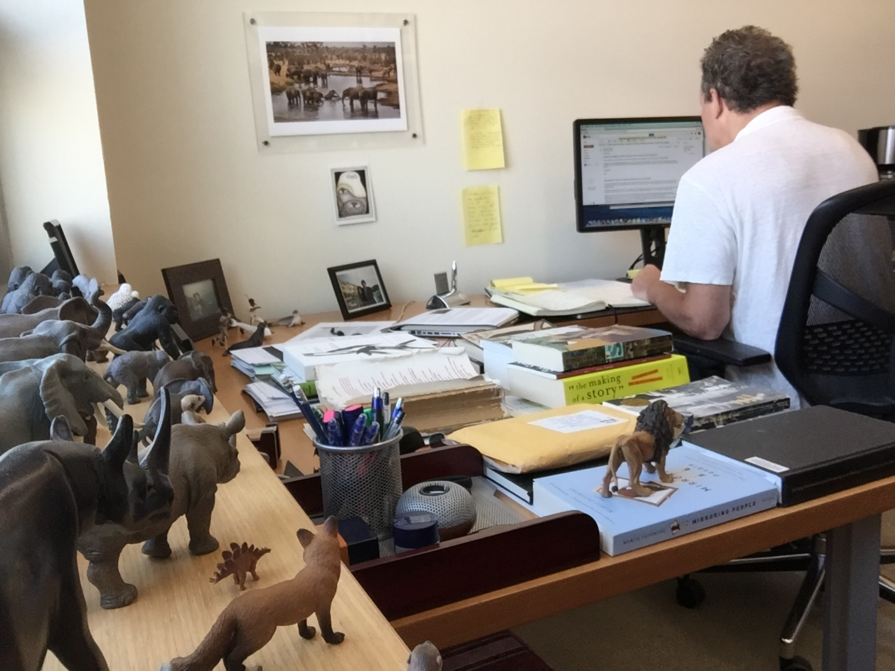 Siebert keeps his precious animal figurines on the windowsill of his office at NYU Abu Dhabi. Photo: Sebastián Cabral.